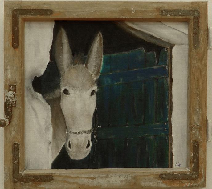 """Gemälde """"Esel in altem Fenster"""" von Erika Winterstein"""