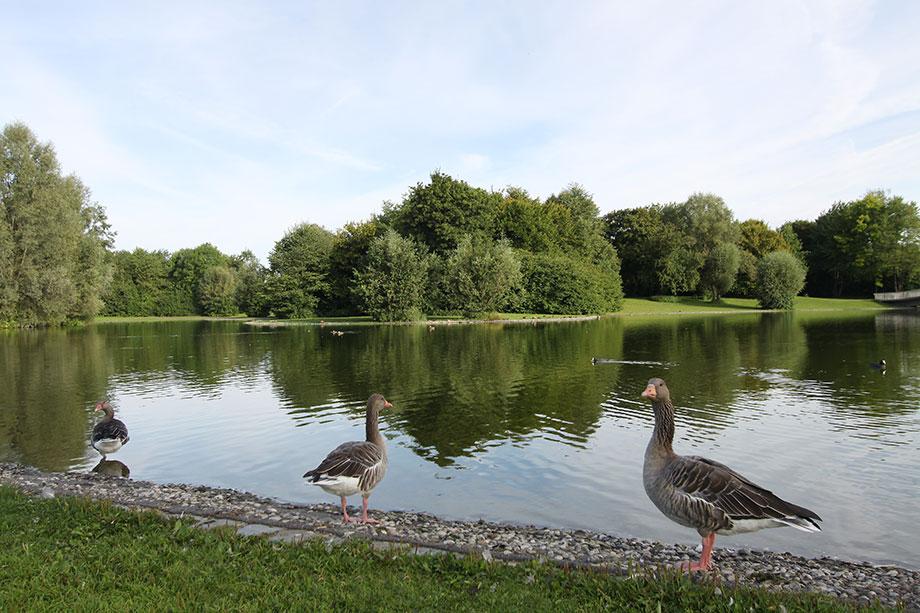 Ostpark München: nur wenige Schritte vom KWA Georg-Brauchle-Haus entfernt