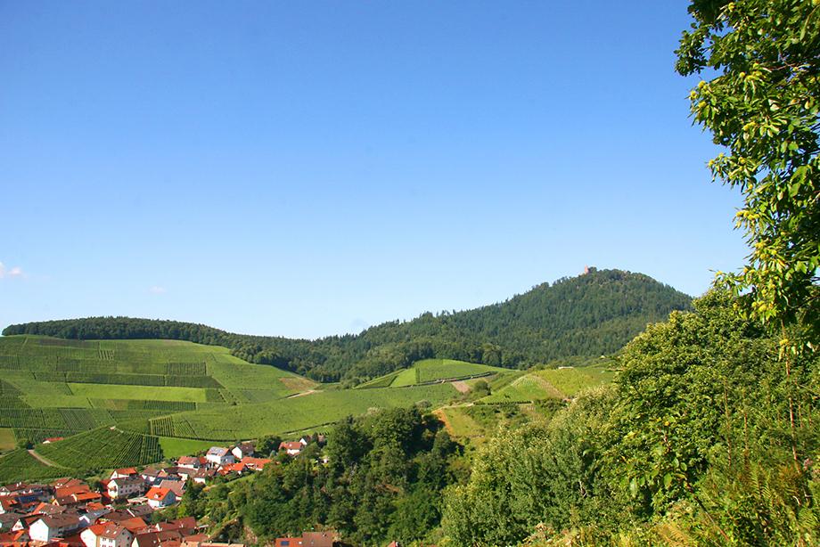 Baden-Baden Rebland: Neuweier und der Yberg; Foto: Baden-Baden Kur & Tourismus GmbH