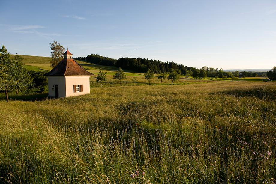 Umgebung von Bad Dürrheim: mit Wiesen, Feldern und Wäldern