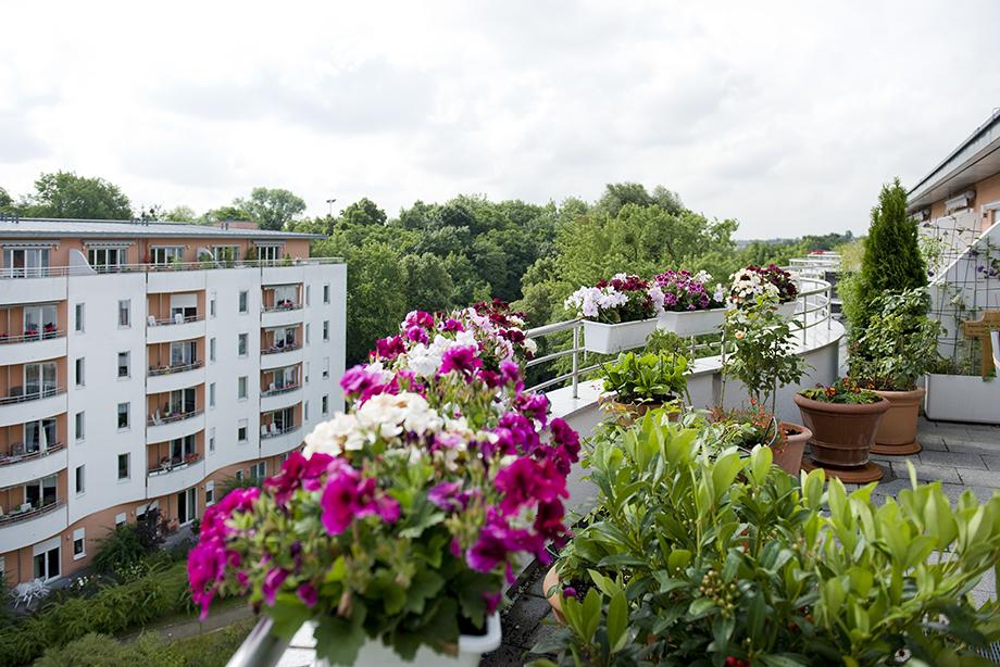 KWA Stift im Hohenzollernpark in Berlin, Blick vom Balkon einer Stiftswohnung