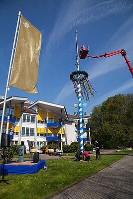 Goldfarbene Fahne und weiß-blauer Maibaum zum Jubiläum