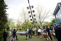 Die Maibaumfreunde Riem und Mitglieder der Freiwilligen Feuerwehr Unterhaching stellten den KWA Maibaum auf